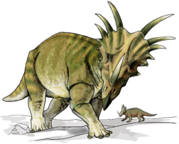 picture of a styracosaurus